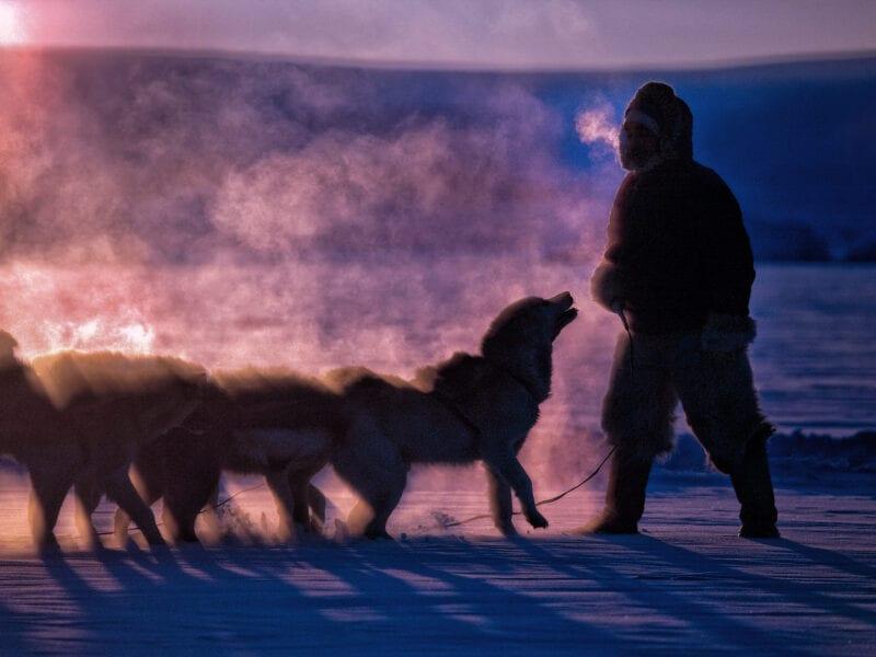 Bei minus 45 Grad zieht der Jäger Tobias zieht mit seinen Hunden übers Eis. Es ist Februar und ein besonderer Tag: Nach vier Monaten Polarnacht schafft es die Sonne zum ersten Mal wieder für einen kurzen Moment über den Horizont - Nordgrönland